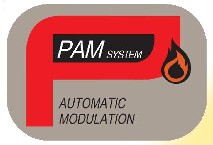 PAM SYSTEM
